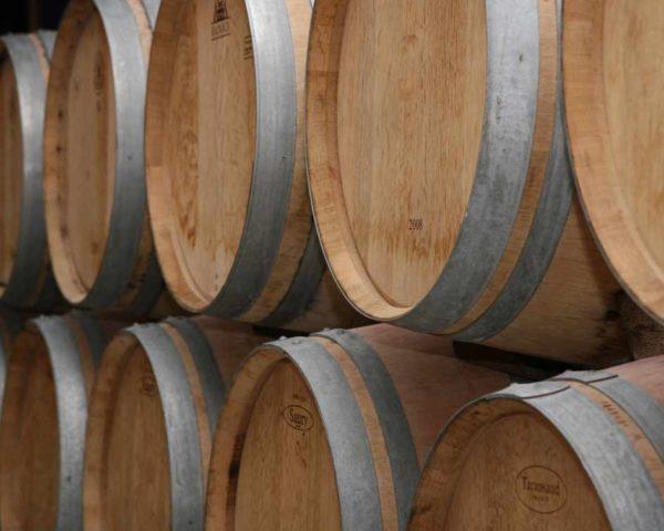 estudiar máster en elaboración de vinos y licores