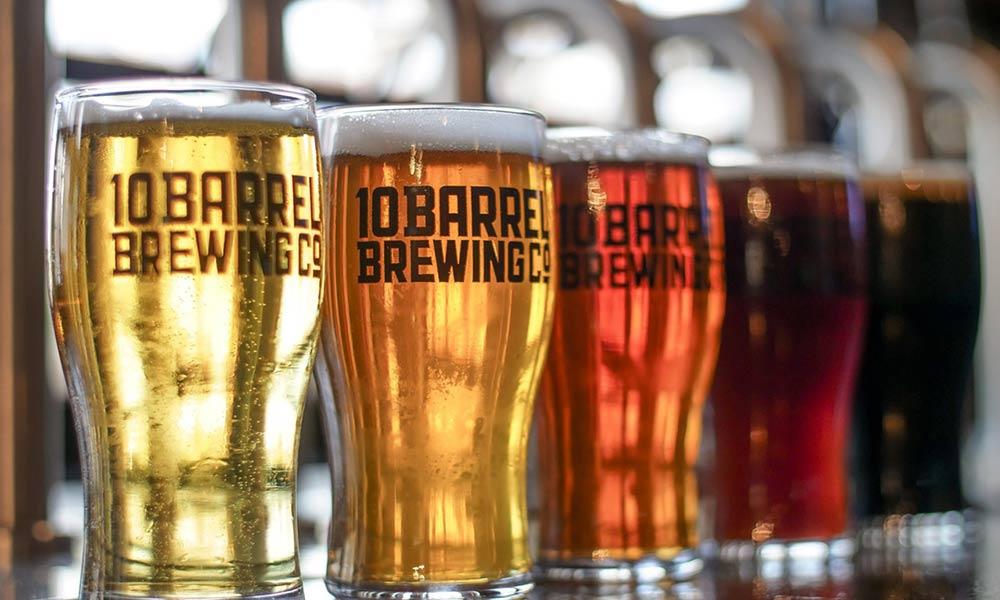 Tipos de cerveza: diversidad de bebidas al gusto de todos